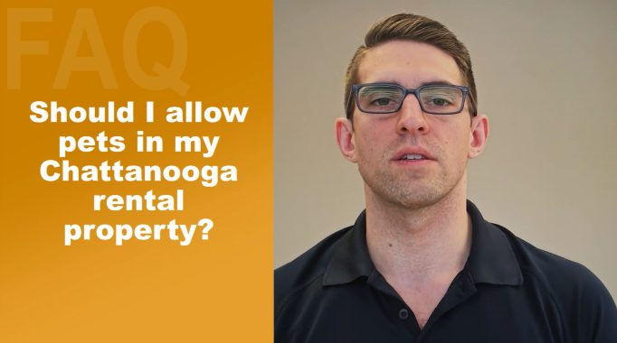 Should I Allow Pets In My Chattanooga Rental Property?